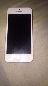 Iphone 5 16gb with rogers!