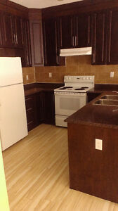 3 Bdrm 1.5 Bath Up/Down Duplexes Available in North Central Regina Regina Area image 1