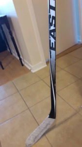 Easton HTX Composite One-piece Hockey Stick E36 Right 100flex