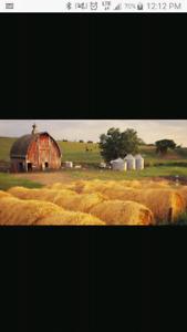 Land - farm - homestead WANTED