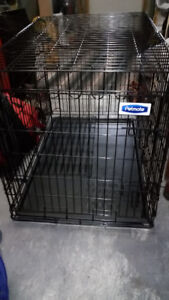 PetSmart Large Dog Kennel