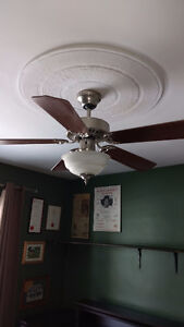ceiling fan with a light in excellent condition