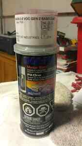 Full can of paint for dodge