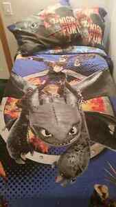 HOW TO TRAIN YOUR DRAGON ~ BEDDING/PICTURES