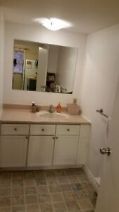 Awesome Large One Bedroom Now Available in Avondale St. John's Newfoundland image 6