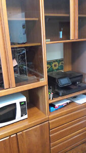 China Cabinet/Entertainment Unit with Glass Doors Set