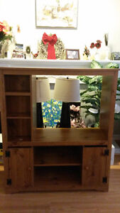 'Cosy & Compact' Entertainment/TV Unit (Eng.Wood)