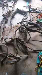 Old Horse harness and halter