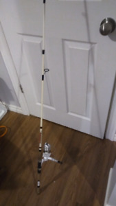 Rapala Prodigy fishing rod