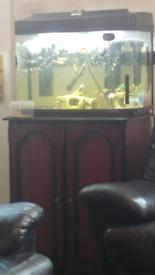 2 ft fish box