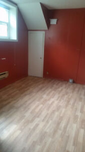 1 Bedroom Bsmt Unit Available - Allows Pets