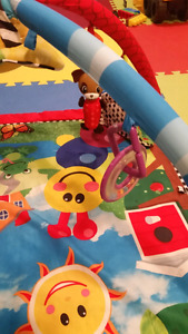 BABY EINSTEIN Play Gym