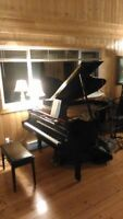 Piano/Theory Lessons   (Chilliwack)