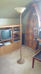 6' Dimmable Floor Lamp