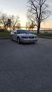 Mustang $850 Priced To Sell