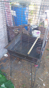 Conure or small parrot cage for sale