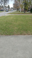 Kase Landscaping- grass cutting/leaves