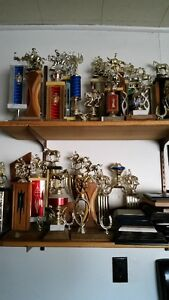 Free Horse and Curling Trophies