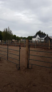 Horse stall available for full board.