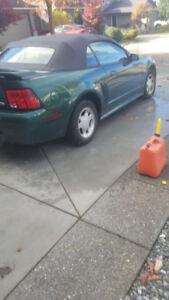 2001 mustang convertible