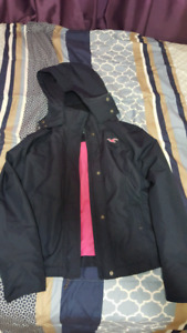 Hollister Navy Jacket