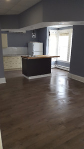 Modern-  1 Bedroom downtown apartment Available Nov 1!