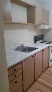 Newly Renovated Two Bedroom + Hydro