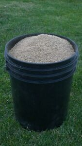 horse pasture seed mix