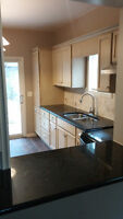 BEAUTIFULLY renovated 2 bdrm semidetached in Walkerville Watch|S
