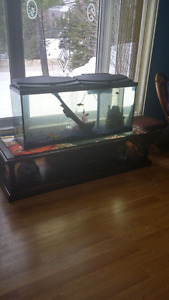 55 gallon fish tank & accessories