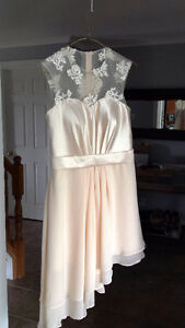 Unique Blush Lace/organza/silk dress sz6-8