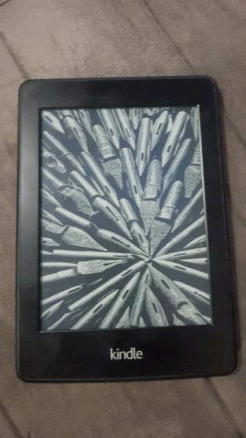 Kindle Screen Frozen