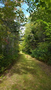 Lot for sale Memramcook Principal st few minutes from Dieppe