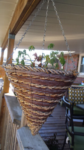 Hanging baskets. 2 pairs. 40 for all.