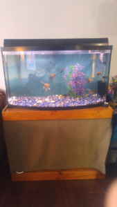 49 gallon bow front fish tank/ aquarium 500 obo