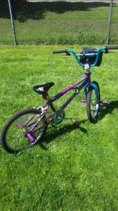 Mongoose Bike Fling 100