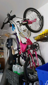 Raleigh girl bicycle