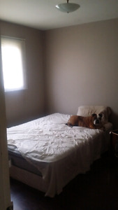 Room for rent 450.00