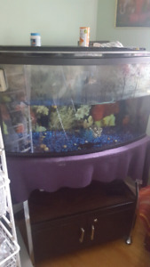 Barely used big fish tank with stand and acessories