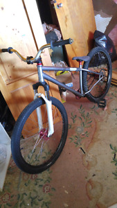 Specialized p1 dirt jumper