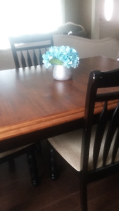 Table and Four Chairs (From Ashley`s Furniture)