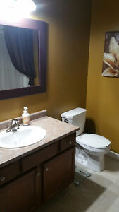 392 Marla Crescent – 4 years old - loaded with extras!! Windsor Region Ontario image 12