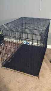 Very large dog crate.  Only 3 months old. Great condition.