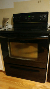 Black Glasstop stove/oven and matching fridge