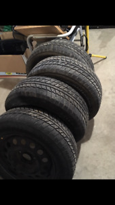 Evergreen winter tires