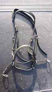 Dr Cook bitless bridle horse size no reins $50 OBO