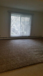 2-BEDROOM SUITE FOR RENT Strathcona County Edmonton Area image 3