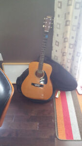 Acoustic Guitar with cover.
