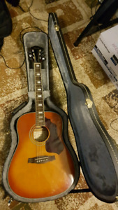 Ibanez acoustic guitar with a hardshell case