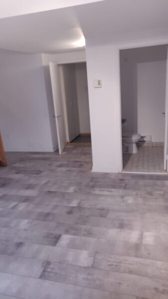 BIG 3 1/2 just renovated apartment in Lasalle in the ...